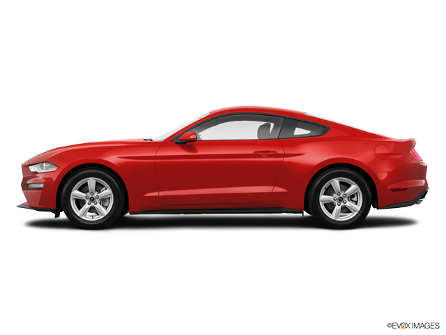 New 2019 Ford Mustang in Lakeland, FL