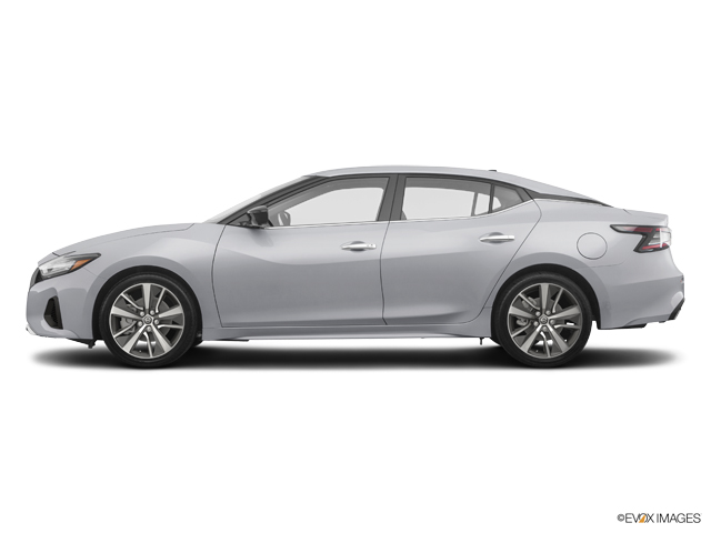 New 2019 Nissan Maxima in Lumberton, NC