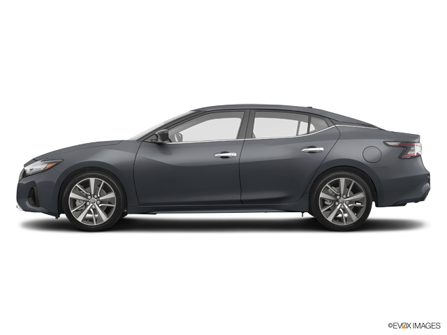 New 2019 Nissan Maxima in Brookhaven, MS
