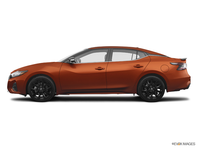New 2019 Nissan Maxima in Martinez, GA