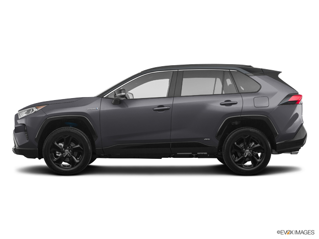 New 2019 Toyota RAV4 in Cleveland, OH