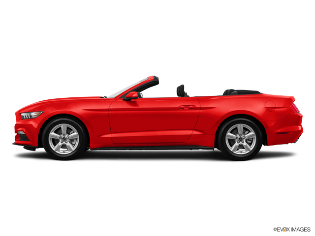 Used 2015 Ford Mustang in Gallatin, TN