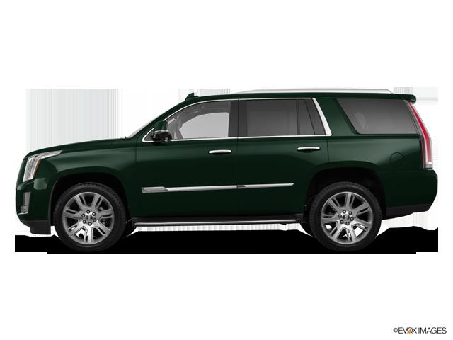 Used 2016 Cadillac Escalade in Tifton, GA