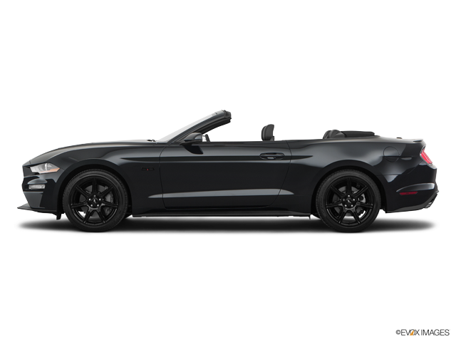 New 2018 Ford Mustang in Tampa Bay, FL
