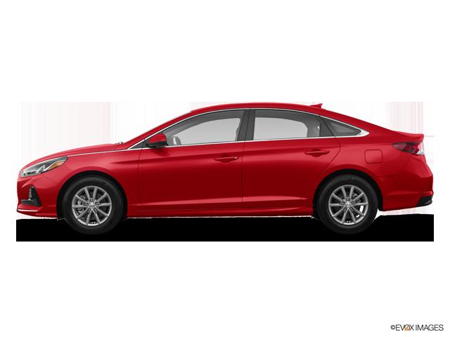 New 2019 Hyundai Sonata in Parma, OH