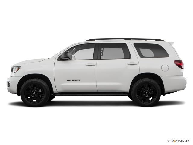 New 2019 Toyota Sequoia in Paducah, KY