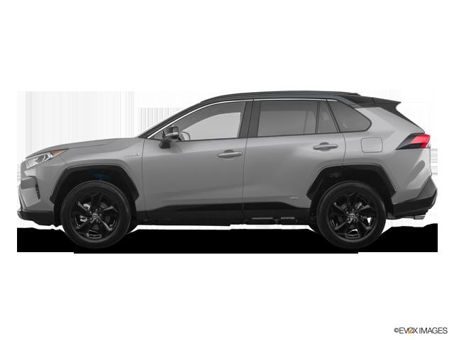 New 2019 Toyota RAV4 Hybrid in Spartanburg, SC