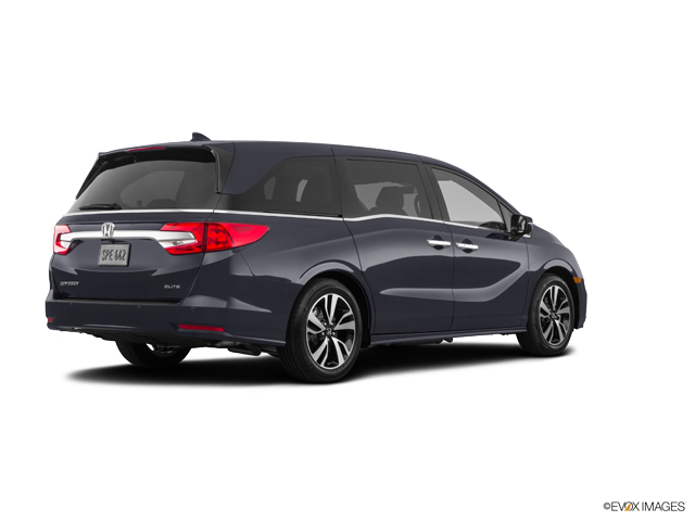 New 2019 Honda Odyssey in Charlottesville, VA