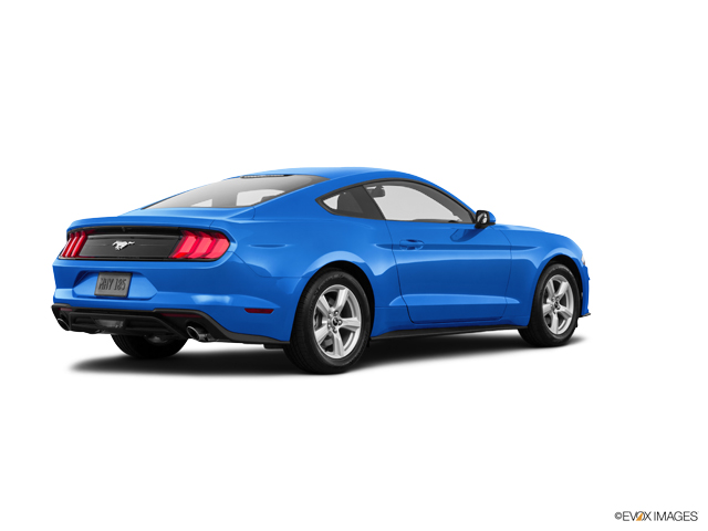 Used 2019 Ford Mustang in Corpus Christi, TX