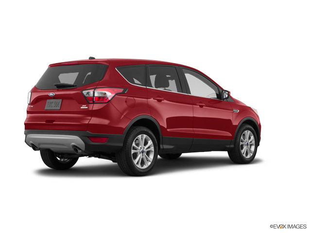Used 2019 Ford Escape in Kansas City, MO