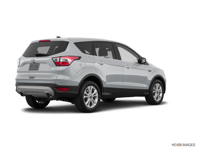 New 2019 Ford Escape in Indianapolis, IN