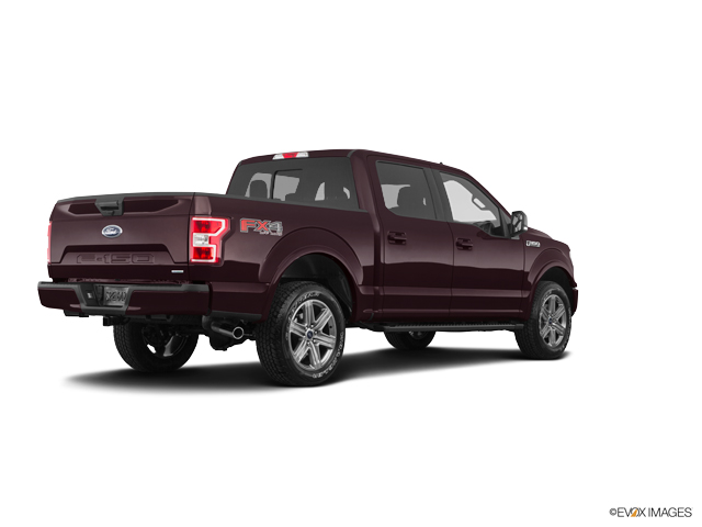 New 2019 Ford F-150 in Franklin, NC