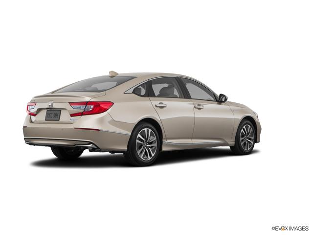 New 2019 Honda Accord Hybrid in Savannah, GA