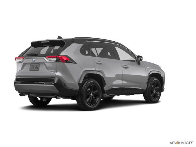 New 2019 Toyota RAV4 Hybrid in Middletown, CT
