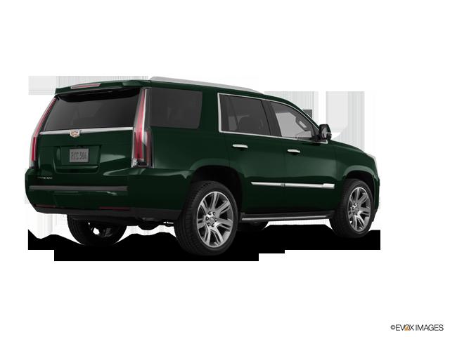 Used 2016 Cadillac Escalade in Valdosta, GA