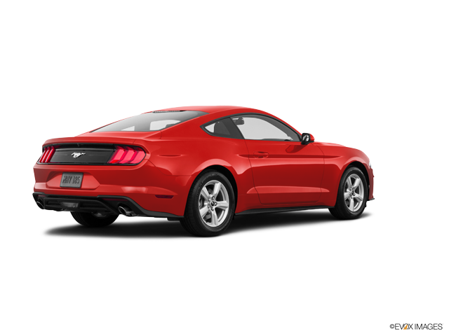 New 2018 Ford Mustang in Lake City , FL