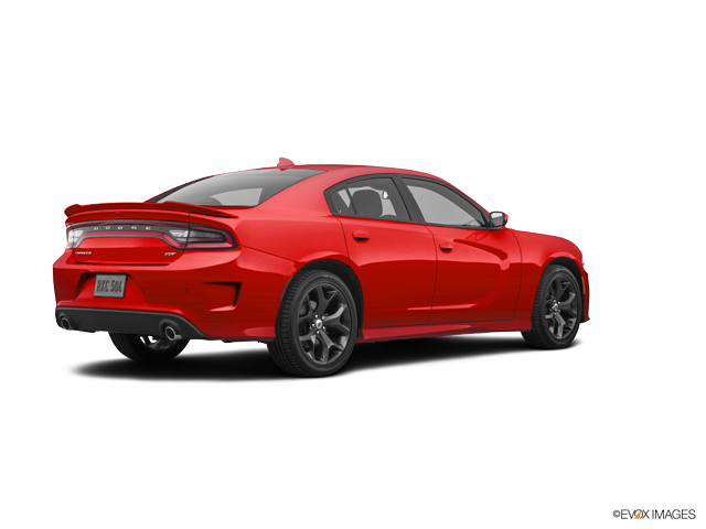 New 2019 Dodge Charger in San Antonio , TX