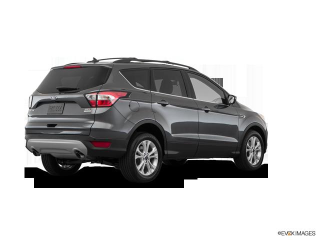 New 2019 Ford Escape in Cheboygan , MI