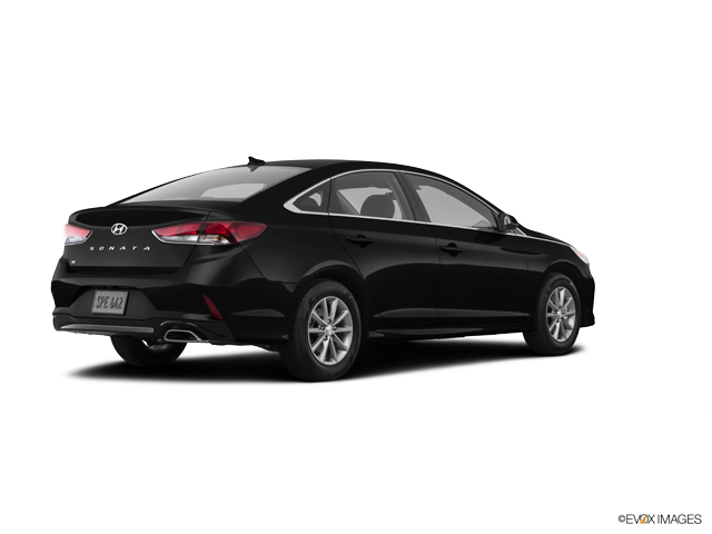 New 2019 Hyundai Sonata in Olathe, KS