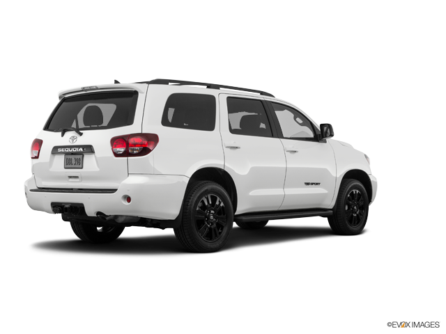 New 2019 Toyota Sequoia in Natchez, MS