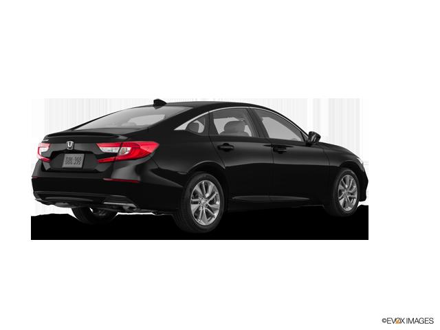 New 2019 Honda Accord Sedan in Ocala, FL
