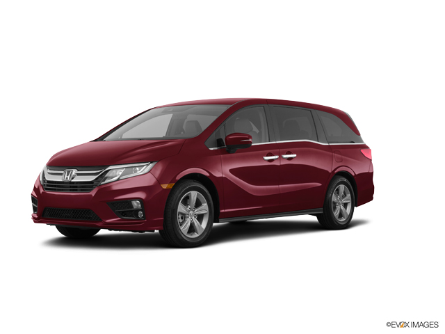 New 2019 Honda Odyssey in Indianapolis, IN