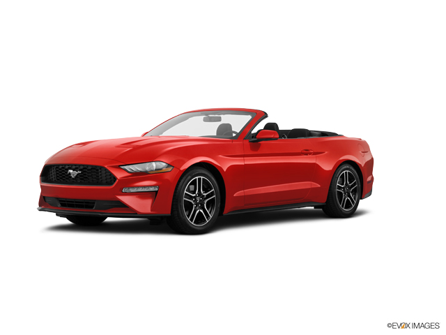 Used 2019 Ford Mustang in Arlington, TX