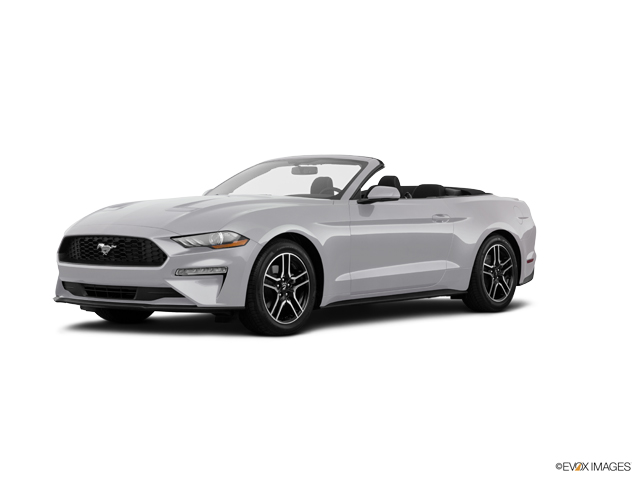 Used 2019 Ford Mustang in San Diego, CA