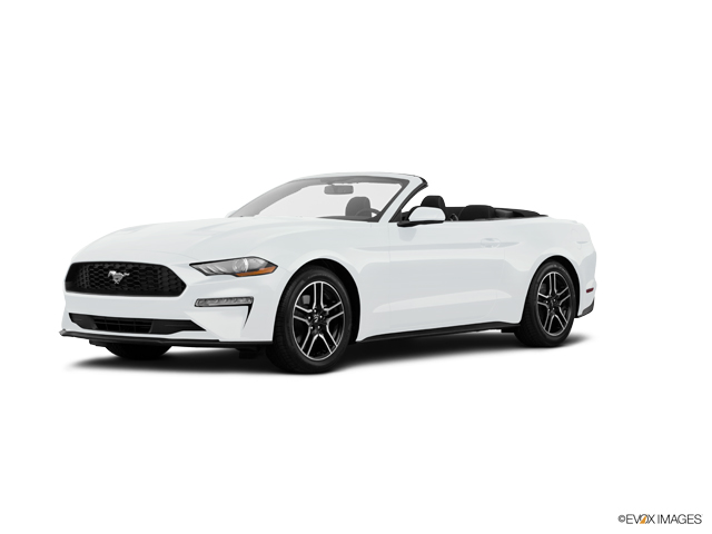 Used 2019 Ford Mustang in , CA