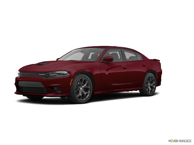 Used 2019 Dodge Charger in Little Falls, NJ