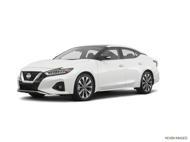 New 2019 Nissan Maxima in Waycross, GA
