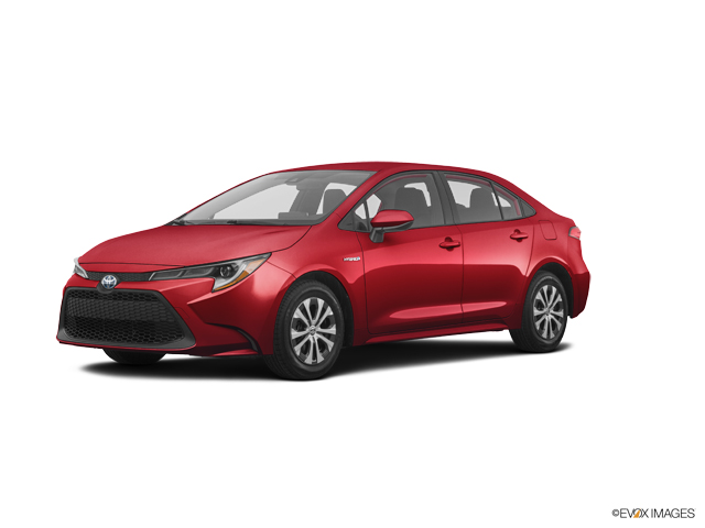 New 2020 Toyota Corolla in Bristol, CT