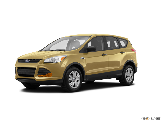 Used 2015 Ford Escape in Kingsport, TN