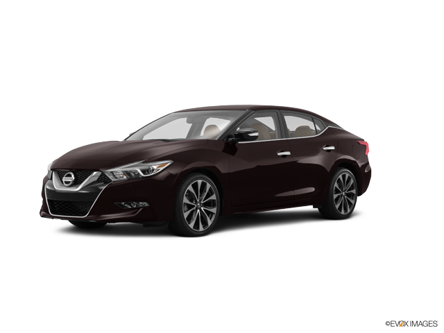 Used 2016 Nissan Maxima in Paducah, KY