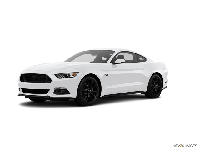 Used 2017 Ford Mustang in Arlington, TX