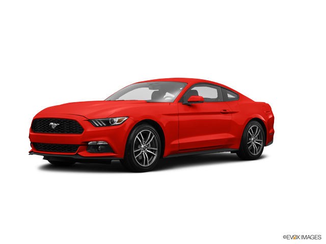 Used 2017 Ford Mustang in Kingsport, TN