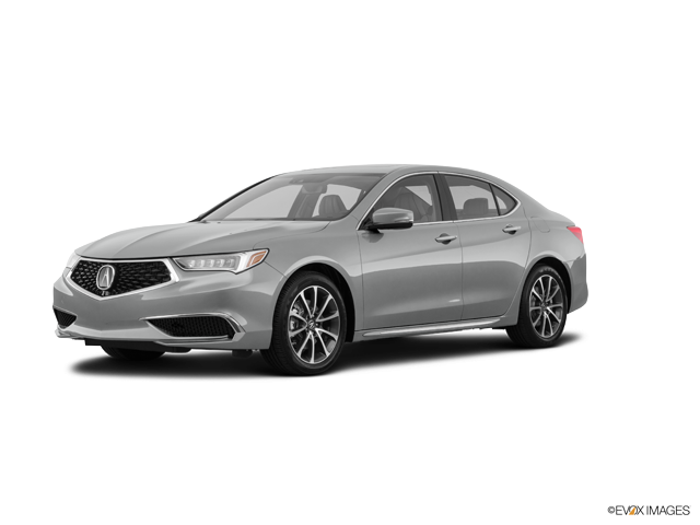 New 2019 Acura TLX in Verona, NJ