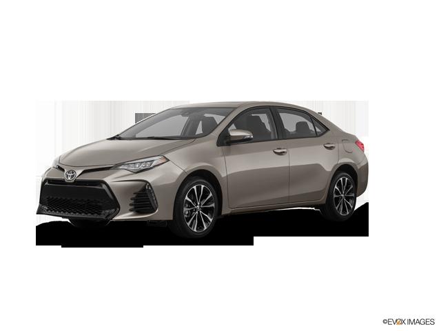 New 2019 Toyota Corolla in Columbus, MS
