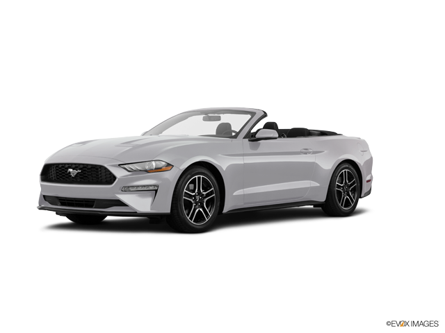 New 2019 Ford Mustang in Coconut Creek, FL