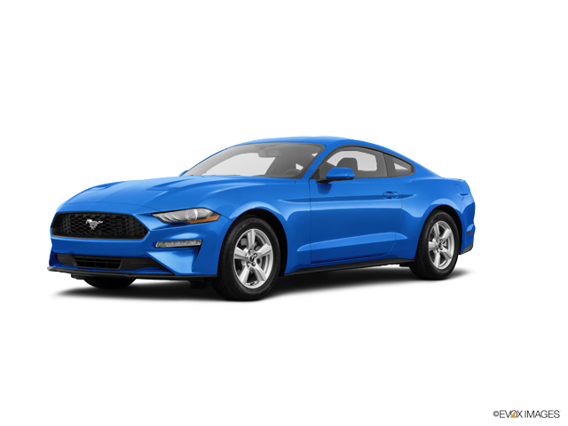 New 2019 Ford Mustang in Fort Payne, AL