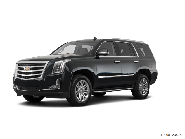 New 2019 Cadillac Escalade in Orange County, CA