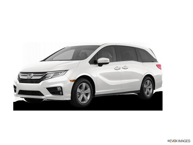 New 2019 Honda Odyssey in Savannah, GA